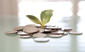 Abstract image of a plant shoot growing from money.