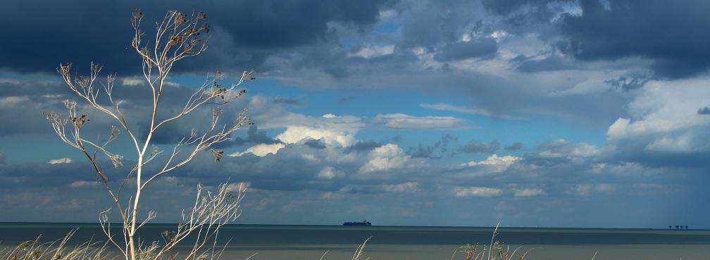 Sheppey Coast 2
